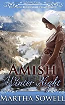 Amish Winter Night (an Amish Romance Story) (the Amish Blessing Of Trials Series)