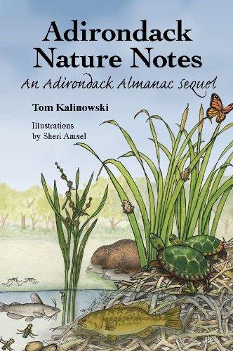 Download Adirondack Nature Notes: An Adirondack Almanac Sequel pdf epub