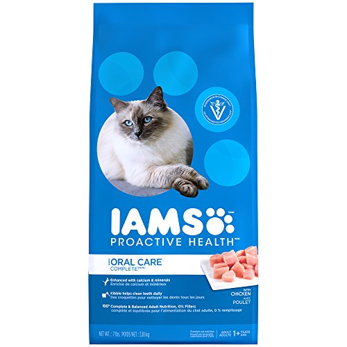iams-proactive-health-adult-cat-oral-care-chicken-dry-cat-food-7-pounds