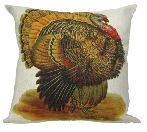 - Crafted Creations Vintage Autumnal Turkey Antique Style Decorative Accent Throw Pillow with Insert 18