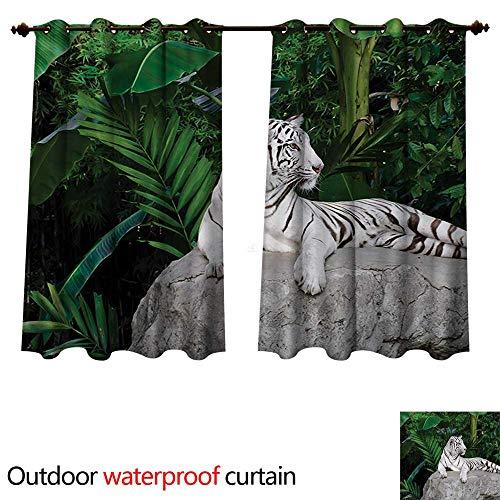 WilliamsDecor Safari Outdoor Curtain for Patio White Tiger Setting on Stone Tropic Plants Leaves Wild Jungle Majestic W63 x L63(160cm x 160cm)