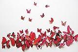 Chunney® 12 Pcs 3D Butterfly New Home Decoration DIY Removable 3D Vivid ...