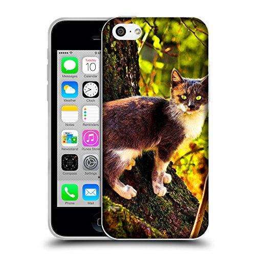 Just Phone Cases Coque de Protection TPU Silicone Case pour // V00004207 Chat sur un arbre avec de la mousse // Apple iPhone 5C