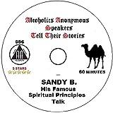 Alcoholics Anonymous AA 12 Step Speaker CD - Sandy Beach Spiritual Principles Talk