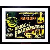 MOVIE FILM SEQUEL BRIDE FRANKENSTEIN KARLOFF WHALE HORROR FRAMED PRINT F97X4132