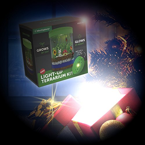 Light Up Terrarium Kit For Kids With Led Light On Lid Create Your