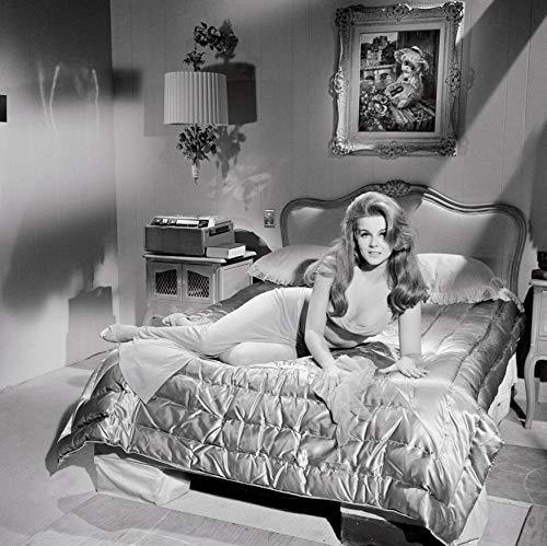 Peel-n-Stick Poster of Ann Margaret Poster Art Pinup Girl Hollywood Movie Vivid Imagery Poster 24 x 16 Adhesive Sticker Poster Print