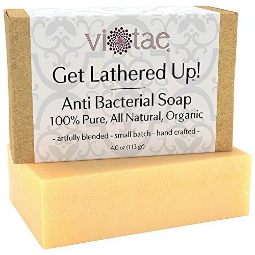 vi-tae-organic-anti-bacterial-soap-4-oz
