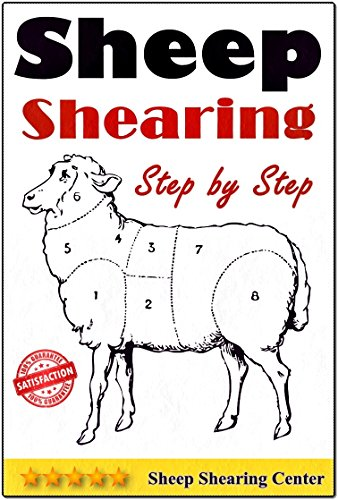 Sheep Shearing: How to shear a sheep step by step with no step skipped by [Sheep Shearing Center]
