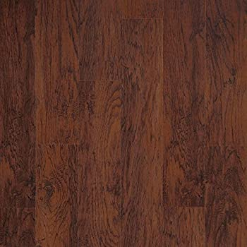Traffic Master Dark Brown Hickory Amazon Com