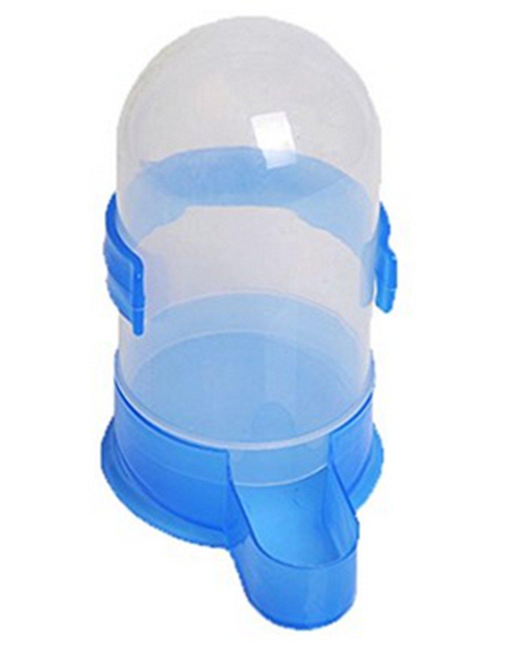 1xToruiwa Birds Water Bottle Blue Water Food Feeding Feeder for Birds Parrots Pigeons (Large)