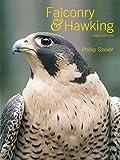 Falconry & Hawking