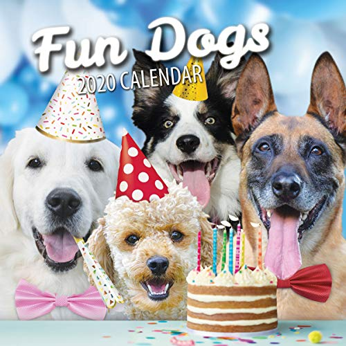 Fun Dogs 2020 Dog Wall Calendar