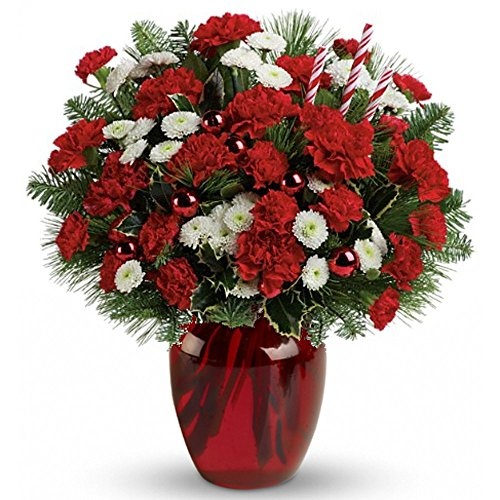 Philadelphia Christmas Fresh Flower Arrangement – Deluxe