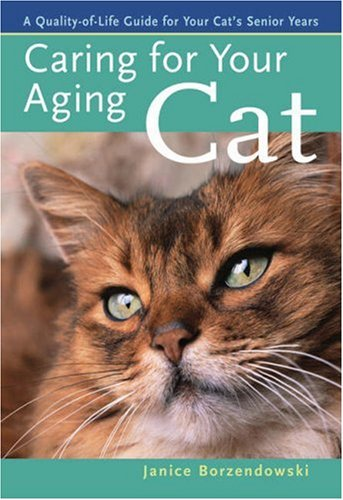 Caring for Your Aging Cat: A Quality-of-Life Guide for Your Cat