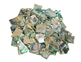4 oz. Irregular Shape One Side Polished Green Abalone Heart Shell for Guitar Inlay, Jewelry Design, Mosaic