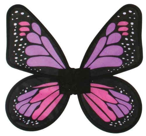 Fun World Satin Butterfly Wings Fuchsia Adult (Pink Butterfly Adult Wings)