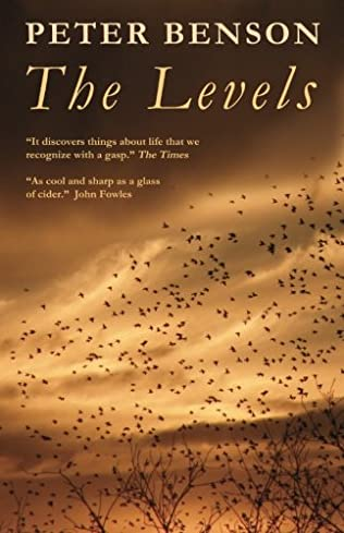 book cover of The Levels