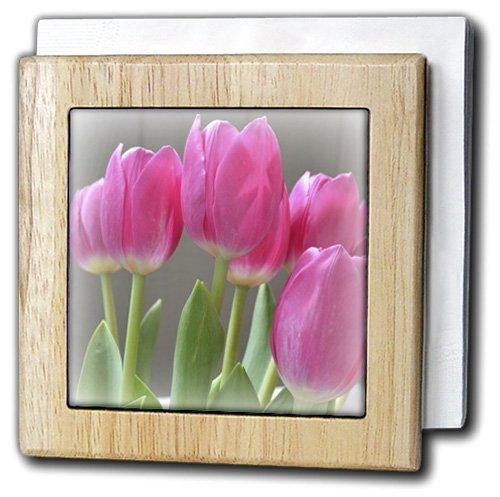 Patricia Sanders花 – Prettyピンク秋tulips- flowers-写真 – タイルナプキンホルダー 6 inch tile napkin holder nh_37526_1 6 inch tile napkin holder  B006UWOJUY