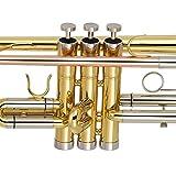 Kaizer C-Series (3000) Standard B Flat Bb Trumpet