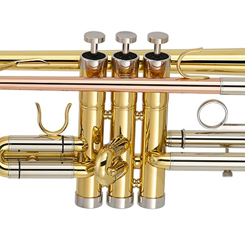 Kaizer Trumpet Trim Kit Fits All Kaizer Trumpets Stainless Steel (Stainless Chrome Pa)