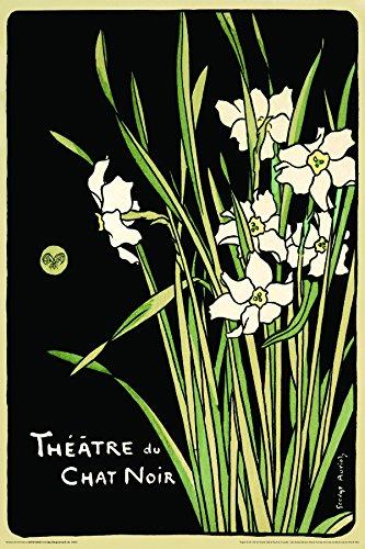 Theatre Du Chat Noir (Flowers) Vintage Advertising Ad Art Decorative Poster Print (Unframed 24 x 36 Poster)