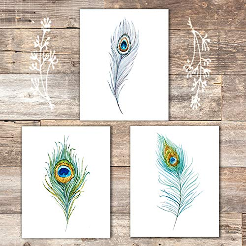 Peacock Feathers Wall Art Prints (Set of 3) - Unframed - ()