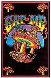 NEW BLACK-LIGHT POSTER - Eat Me Mushroom Flocked 23x35 Blacklight Poster Print, 23x35
