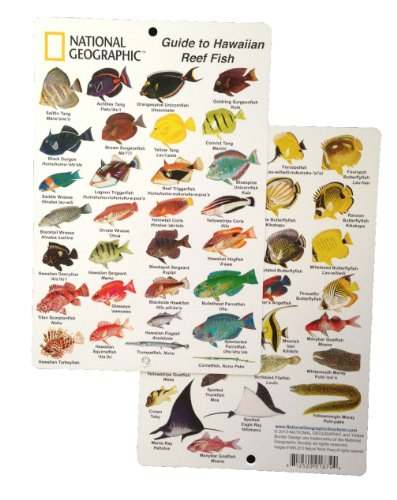 - National Geographic - Guide to Hawaiian Reef fish - Fish ID Card (6 in by 9 in)