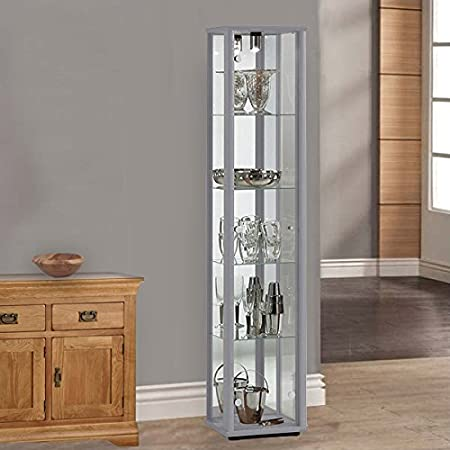 Displaysense Silver Single Door Glass Display Cabinet With Lighting