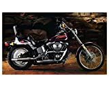 1989 Harley Davidson FXSTC Softail Custom Factory