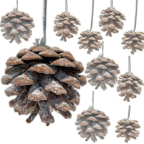BANBERRY DESIGNS Pinecone Ornaments - Bag of Approx. 30 Real Pinecones Assorted Sizes - Natural Brown White Washed Cones Strings - Rustic Small Pinecones Bulk - Fall Christmas 1.5 Inch to 2.5 Inch