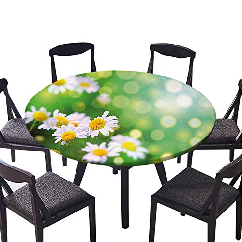 SATVSHOP Round Tablecloth 100% Polyester Circular-40 Round-Floral Field of Daisy Flowers Ural Scenery Fr h Spring Meadow Nature Green White Yellow.(Elastic Edge)