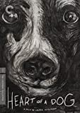 Heart of a Dog (The Criterion Collection)