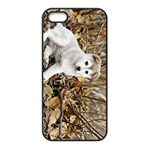 Cute Dog Hight Quality Plastic Case for Iphone 5s