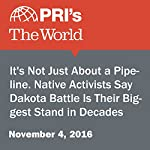 It's Not Just About a Pipeline. Native Activists Say Dakota Battle Is Their Biggest Stand in Decades | Sandy Tolan