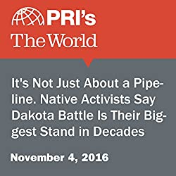 It's Not Just About a Pipeline. Native Activists Say Dakota Battle Is Their Biggest Stand in Decades