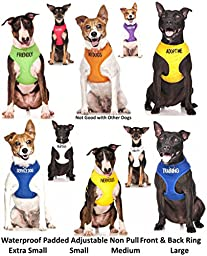Dexil Adopt Me Yellow Color Coded Non-Pull Front and Back D Ring Padded and Waterproof Vest Dog Harness, Large Harness 22-32 Inch Chest/Girth