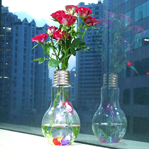10' Glass Lid (Charberry Glowing Light Bulb Shape Stand Plant Flower Vase Hydroponic Container Bottle (Silver))