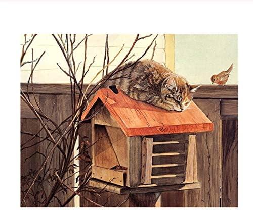Pintura Por Números Diy Digital Package Envíe Por Correo Al Gato ...