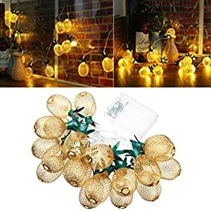 Battery Powered 2.3M 20LEDs Warm White Pineapple Shaped Outdoor Lanterns String Lights For Holidays by Superjune