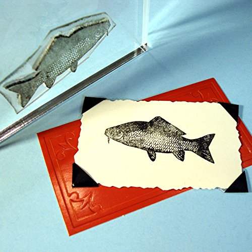 Fish Stamp, clear polymer cling 1