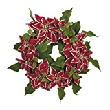 "24"" Red Royal Poinsettia Flower Christmas Wreath #XPR336-RE"