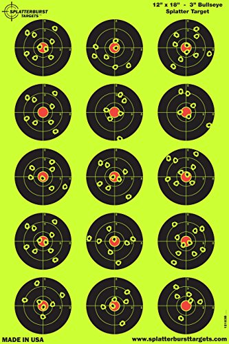 12 x 18 target - 2