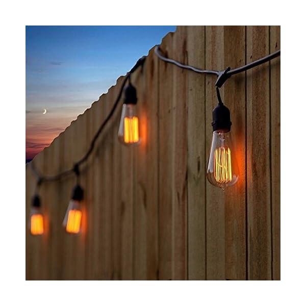 A19 Edison Bulb 60Watt,Vintage Bulb Dimmable Squirrel Cage Filament Edison Lihgt Bulb for Home Light Fixtures Decorative… 5