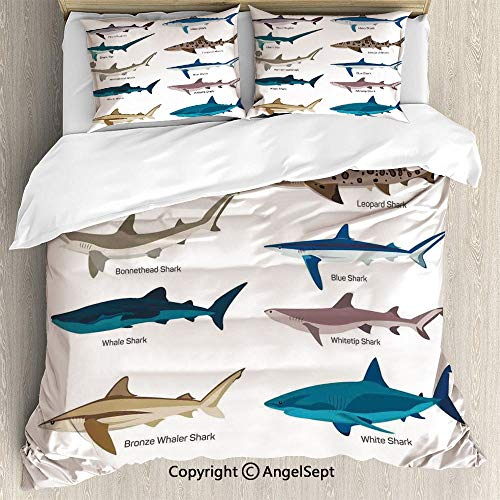 AngelSept 3-Piece Bed Set,Collection Types of Sharks Bronze Whaler and Piked Dogfish Fox Maritime Design,Twin Size,Lightweight Bedspread for Spring and Summer,Multi