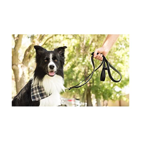 (Black/Red/Grey) – Leashboss 3X – Two Handle Dog Leash with Extra Traffic Handle – Heavy Duty Double Padded Handle Lead… Click on image for further info. 4
