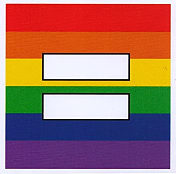 Rainbow equal sign small bumper sticker decal 3 5