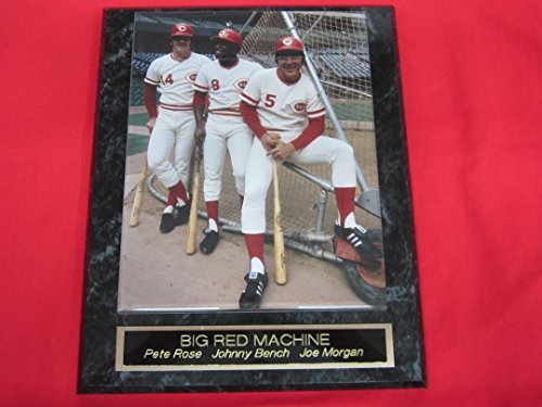 Pete Rose Johnny Bench - 7