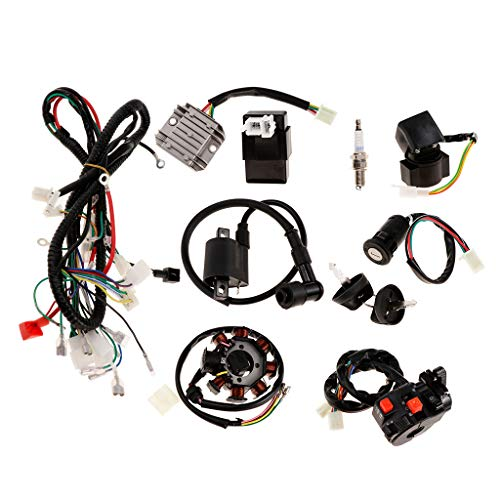 H HILABEE Electric Wiring Harness Wire Loom CDI Stator Assembly Kit For 150/250cc ATV: